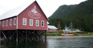 Excursii Optionale Icy Strait Point