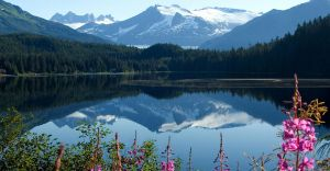 Excursii Optionale Juneau
