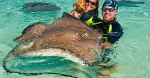 Excursii Optionale Grand Cayman