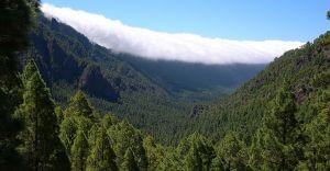 Excursii Optionale La Palma